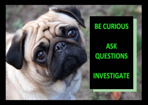 Building A Home - Ask Questions and Investigage