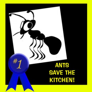 Garbage Disposal Leak Thwarted By Ants
